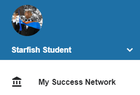 access the student success network from the menu