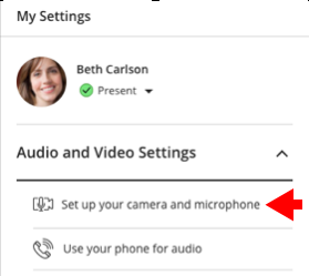 """Screen shot indicating """"Set up your camera and microphone"""" option"""